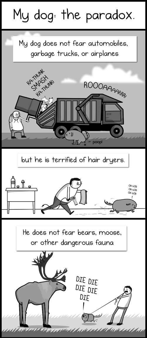 The Oatmeal - My Dog: The Paradox