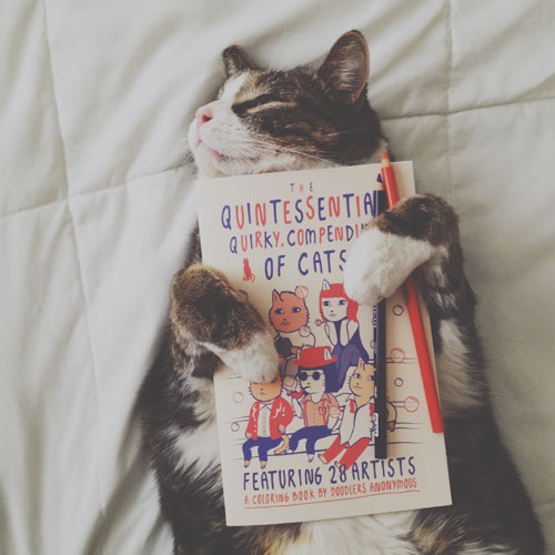 Doodlers Anonymous: The Quintessential, Quirky, Compendium of Cats