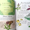 Nature Anatomy by Julia Rothman